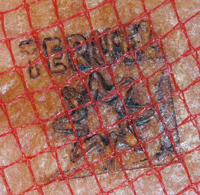 estrella de Teruel marcada en la piel del jamón